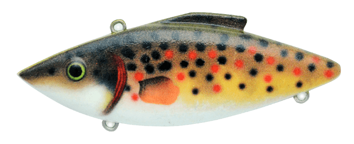 283-Brown-Trout
